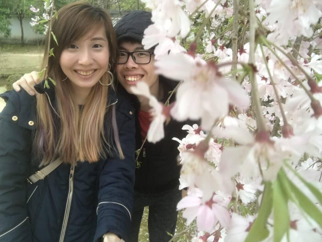 White sakura at Himeji Castle