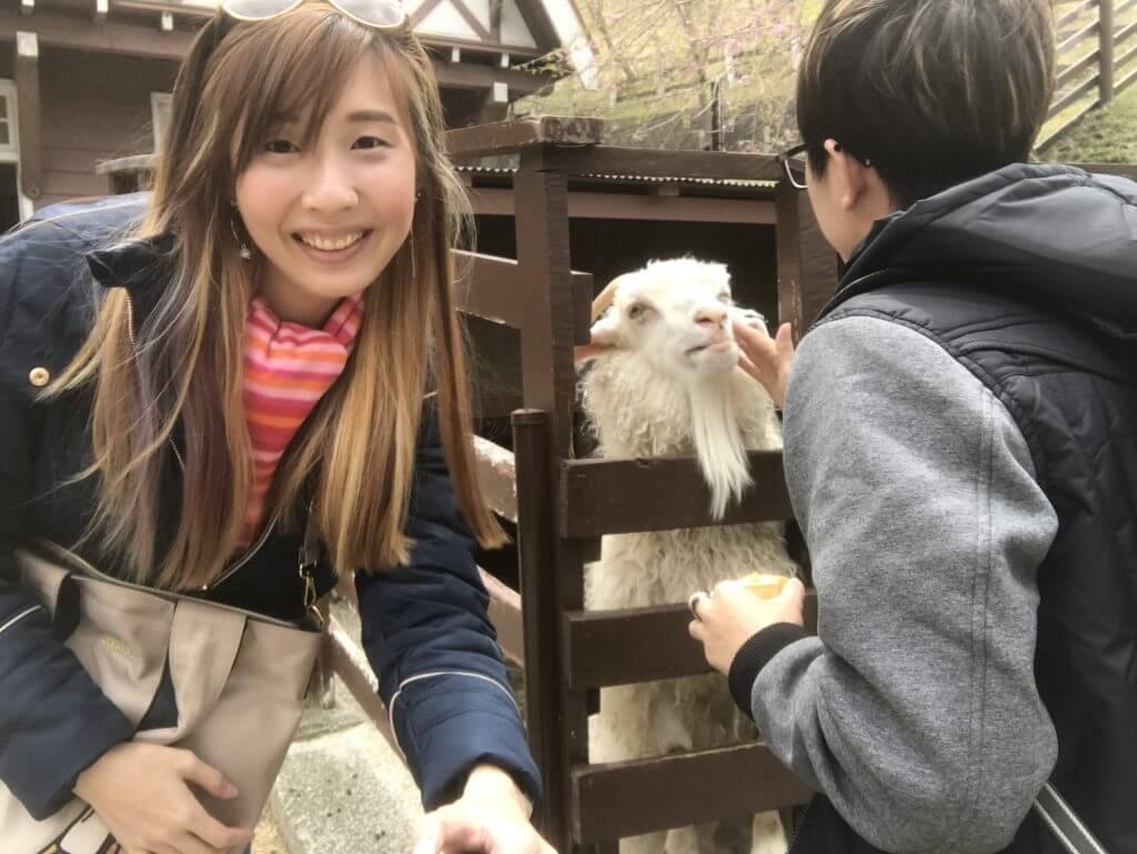 Rokkosan Pasture - Goat